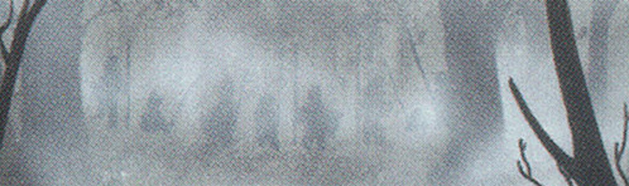 Fog - LEA - Banner